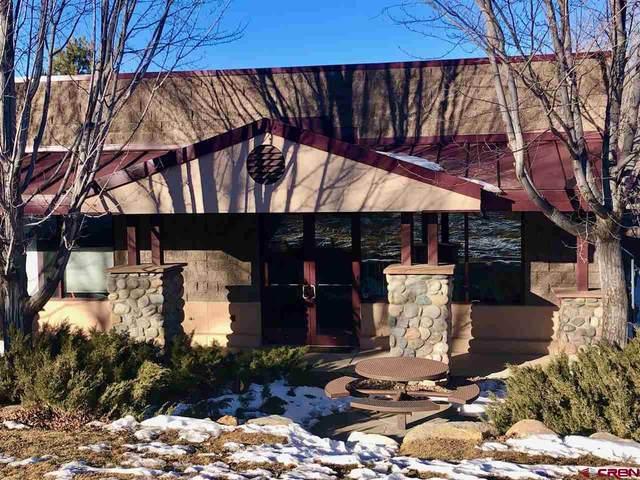 48 Cr 250 #8 #8, Durango, CO 81301 (MLS #778618) :: Durango Mountain Realty