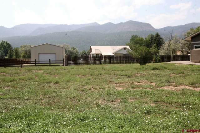 578 Hermosa Meadows Road, Durango, CO 81301 (MLS #778636) :: Durango Mountain Realty