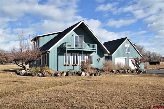 21309 Iris Lane, Cedaredge, CO 81413 (MLS #778645) :: The Dawn Howe Group | Keller Williams Colorado West Realty