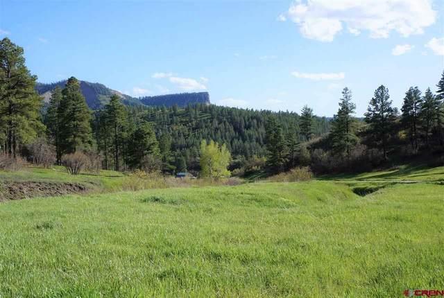 359 Ironwood Drive, Pagosa Springs, CO 81147 (MLS #778659) :: The Dawn Howe Group | Keller Williams Colorado West Realty