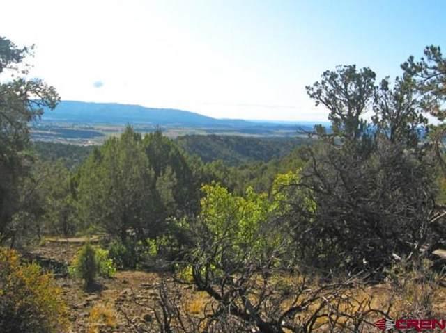 1130 Fox Fire Ridge Road, Bayfield, CO 81122 (MLS #778678) :: The Dawn Howe Group   Keller Williams Colorado West Realty