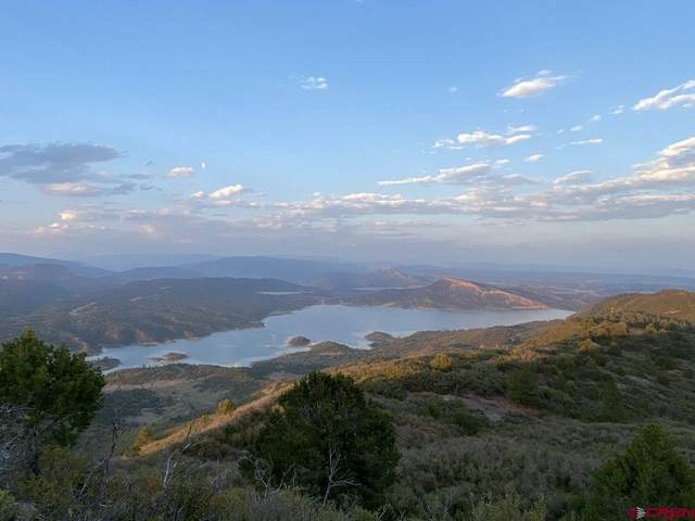 TBD Deer Valley Road, Hesperus, CO 81326 (MLS #778731) :: Durango Mountain Realty
