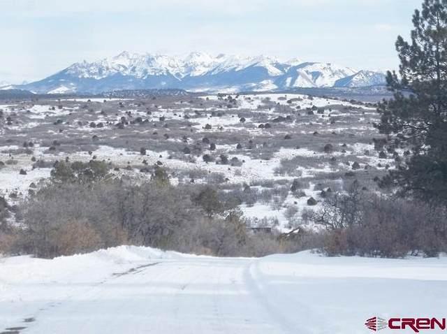 1100 N Gurley Lake Drive, Norwood, CO 81423 (MLS #778739) :: The Howe Group | Keller Williams Colorado West Realty