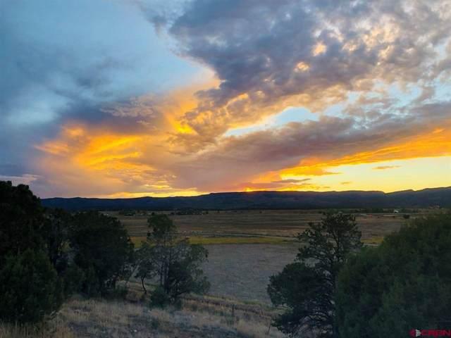 248 Mesa Encantada, Durango, CO 81303 (MLS #778853) :: Durango Mountain Realty