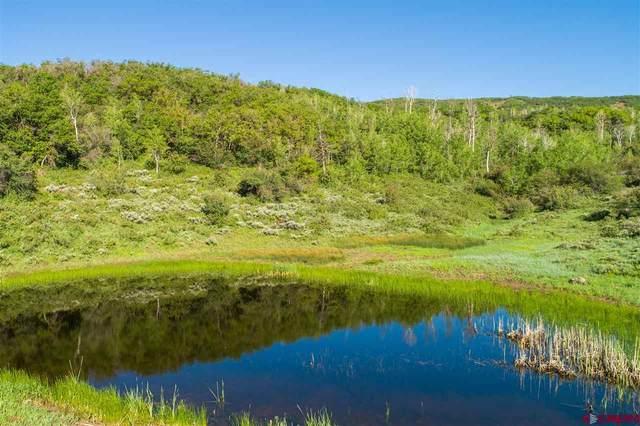 TBD Hwy 330 E Highway, Collbran, CO 81624 (MLS #778889) :: The Dawn Howe Group | Keller Williams Colorado West Realty