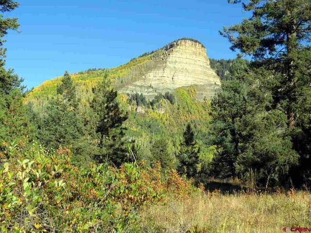 367 Two Dogs Trail, Durango, CO 81301 (MLS #778967) :: Durango Mountain Realty