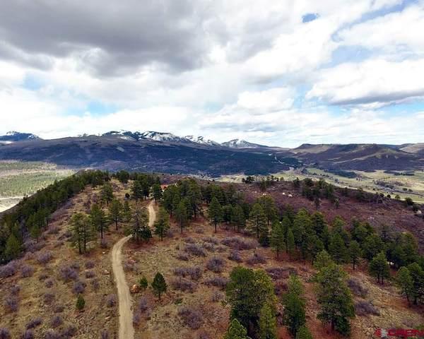 TBD Road 46.1, Mancos, CO 81328 (MLS #779030) :: The Dawn Howe Group | Keller Williams Colorado West Realty