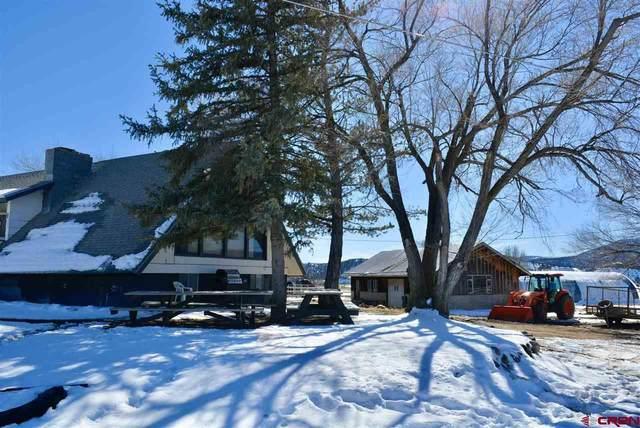849 County Road 215, Durango, CO 81303 (MLS #779040) :: Durango Mountain Realty