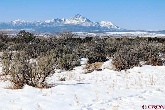 13150 Road 30.5 Loop, Mancos, CO 81328 (MLS #779046) :: The Dawn Howe Group | Keller Williams Colorado West Realty