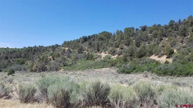 657 Brave Court, Hesperus, CO 81326 (MLS #779052) :: Durango Mountain Realty