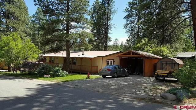 72 Timber Dr, Durango, CO 81303 (MLS #779067) :: Durango Mountain Realty