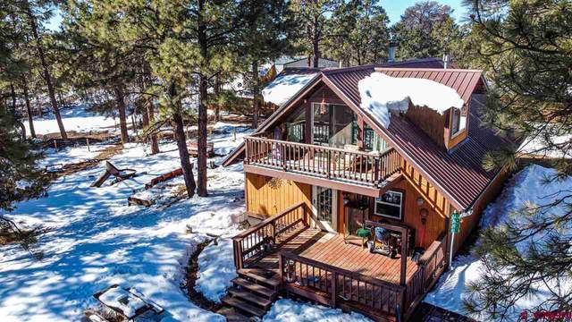 521 Alpine Drive, Durango, CO 81301 (MLS #779112) :: Durango Mountain Realty