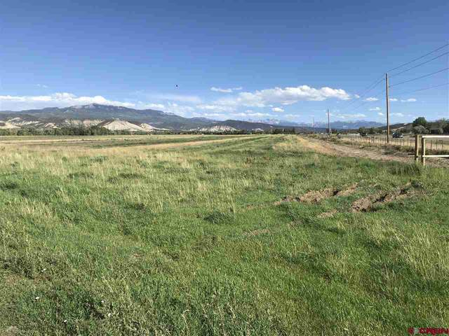 TBD Trout Road, Montrose, CO 81403 (MLS #779113) :: The Dawn Howe Group | Keller Williams Colorado West Realty