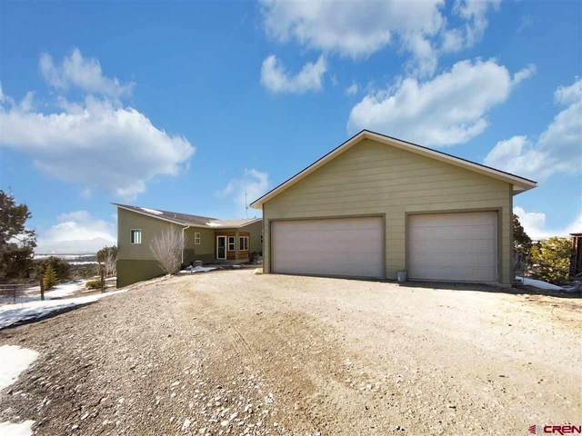 34880 J.7 Road, Mancos, CO 81328 (MLS #779121) :: The Dawn Howe Group | Keller Williams Colorado West Realty