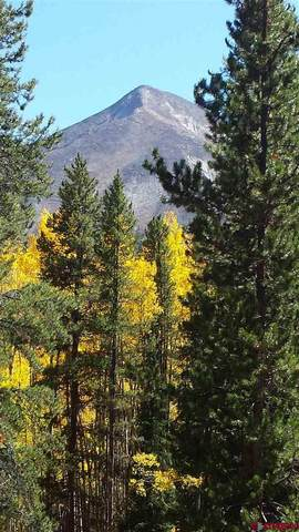 Wildcat Trail, Crested Butte, CO 81224 (MLS #779161) :: The Howe Group | Keller Williams Colorado West Realty