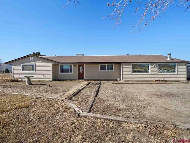 895 21 Road, Fruita, CO 81521 (MLS #779172) :: The Dawn Howe Group | Keller Williams Colorado West Realty