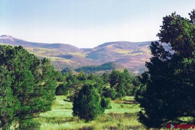 4170 Bear Creek Circle, South Fork, CO 81154 (MLS #779176) :: The Dawn Howe Group | Keller Williams Colorado West Realty
