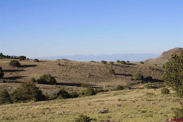 Cord 14-C, #1, Del Norte, CO 81132 (MLS #779184) :: The Dawn Howe Group | Keller Williams Colorado West Realty