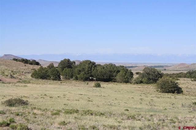 Cord 14-C, #2, Del Norte, CO 81132 (MLS #779186) :: The Dawn Howe Group | Keller Williams Colorado West Realty