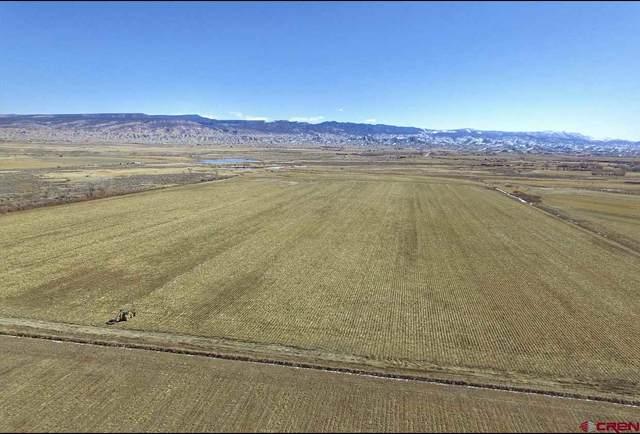 TBD 6075 RD, Olathe, CO 81425 (MLS #779187) :: The Dawn Howe Group | Keller Williams Colorado West Realty