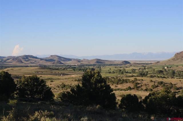 Cord 14-C, #4, Del Norte, CO 81132 (MLS #779190) :: The Dawn Howe Group | Keller Williams Colorado West Realty