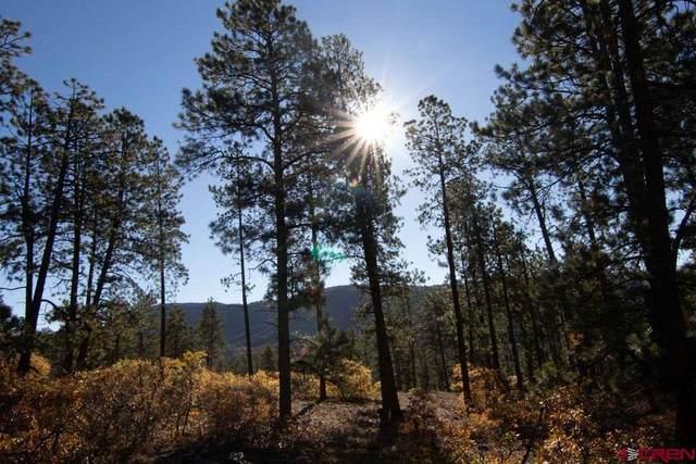 848 Red Canyon Trail, Durango, CO 81301 (MLS #779220) :: Durango Mountain Realty