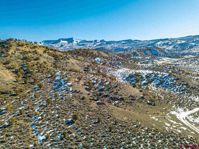 TBD Deep Gulch Trail, Crawford, CO 81415 (MLS #779289) :: The Dawn Howe Group | Keller Williams Colorado West Realty