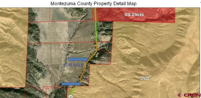 4720 Road 41, Mancos, CO 81328 (MLS #779327) :: The Dawn Howe Group | Keller Williams Colorado West Realty
