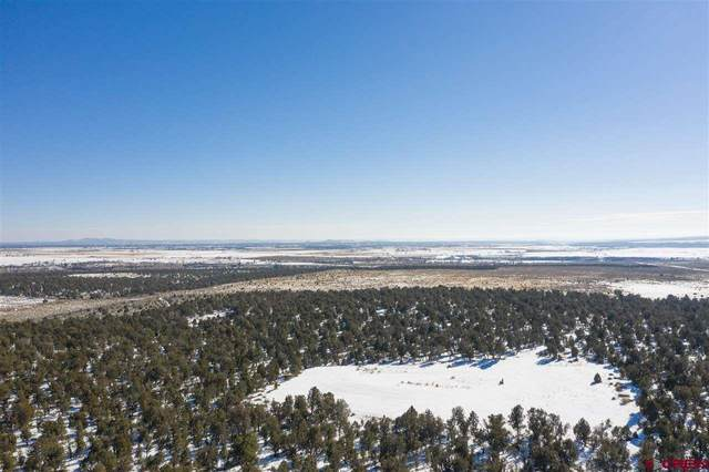 TBD County Road 116, Hesperus, CO 81326 (MLS #779384) :: The Dawn Howe Group | Keller Williams Colorado West Realty
