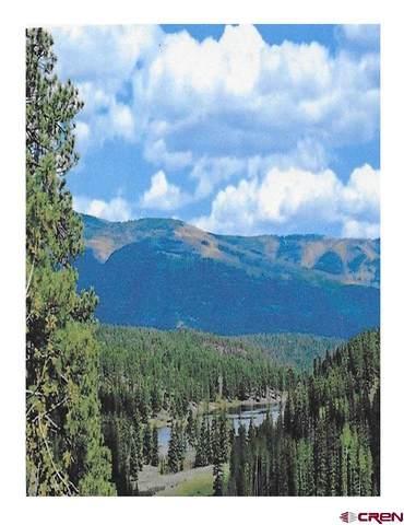 43290 Us Hwy 550 N, Durango, CO 81301 (MLS #779430) :: The Dawn Howe Group | Keller Williams Colorado West Realty