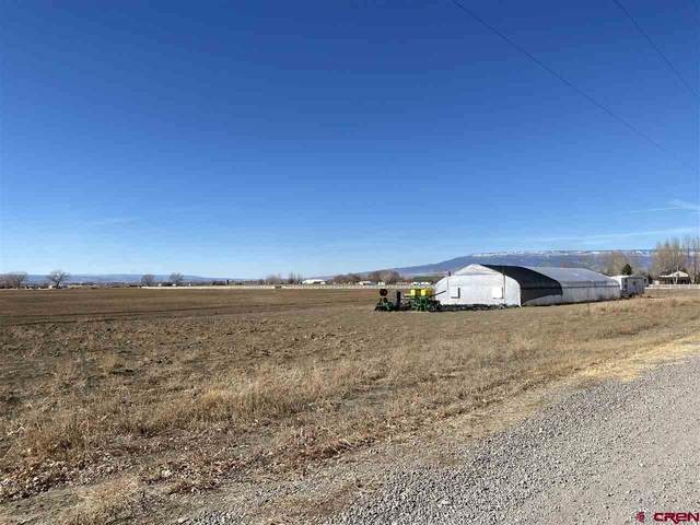 TBD 5950 Road, Olathe, CO 81425 (MLS #779442) :: The Howe Group | Keller Williams Colorado West Realty