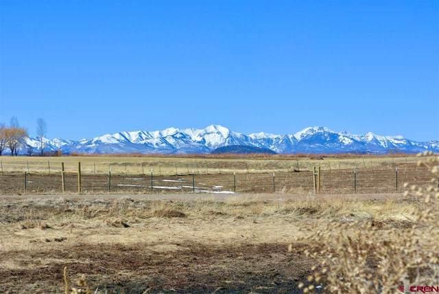 228 Moreno Lane, Durango, CO 81303 (MLS #779453) :: The Dawn Howe Group | Keller Williams Colorado West Realty