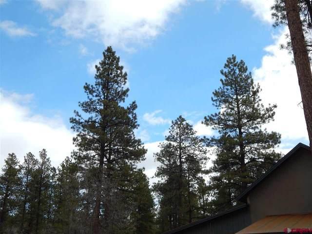 49 Terra Blue (Lot 25) Way, Durango, CO 81301 (MLS #779479) :: The Dawn Howe Group | Keller Williams Colorado West Realty