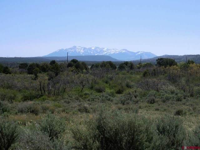 tbd 44VE Road, Norwood, CO 81432 (MLS #779488) :: The Howe Group   Keller Williams Colorado West Realty