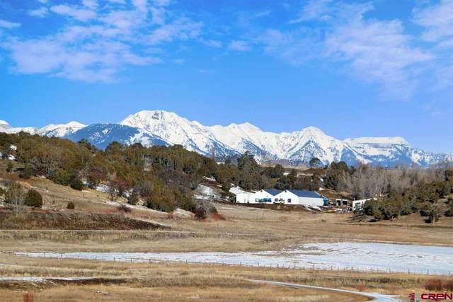 19 Bareback Lane, Durango, CO 81301 (MLS #779554) :: Durango Mountain Realty