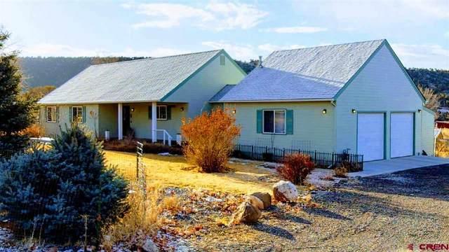 24080 Parkwood Lane, Cedaredge, CO 81413 (MLS #779645) :: The Dawn Howe Group | Keller Williams Colorado West Realty