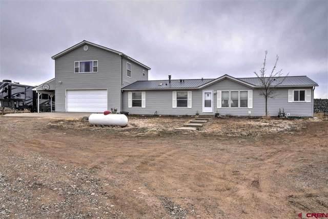 800 Quarter Horse Road, Durango, CO 81303 (MLS #779754) :: Durango Mountain Realty