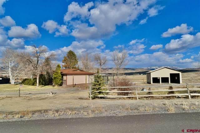 67385 E Borough Drive, Montrose, CO 81401 (MLS #779817) :: The Dawn Howe Group | Keller Williams Colorado West Realty