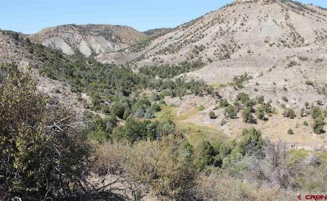 2930 (LOT 4A) Rancho Durango Road, Durango, CO 81303 (MLS #779819) :: Durango Mountain Realty