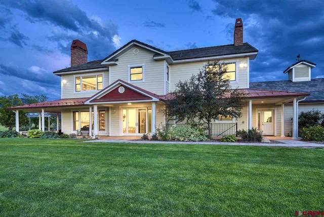 3575 E Road, Palisade, CO 81526 (MLS #779920) :: The Dawn Howe Group | Keller Williams Colorado West Realty