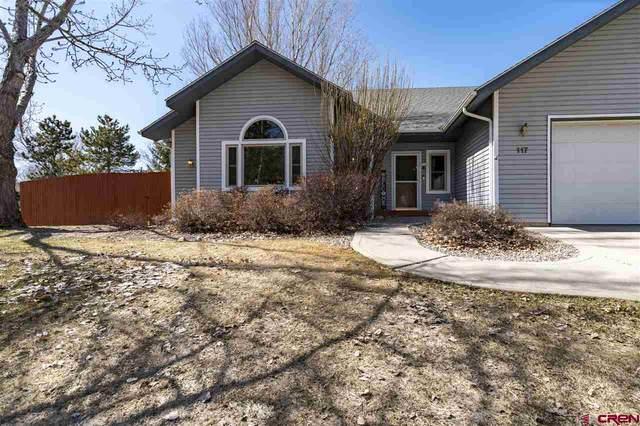 117 Linda Court, Durango, CO 81301 (MLS #779943) :: The Dawn Howe Group | Keller Williams Colorado West Realty