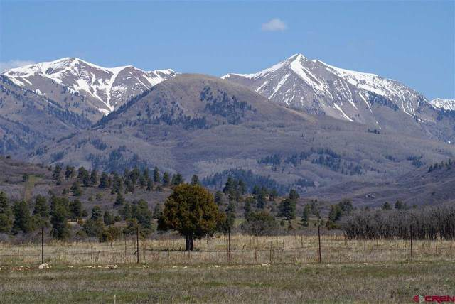 244 Equestrian Trail, Hesperus, CO 81326 (MLS #780042) :: Durango Mountain Realty