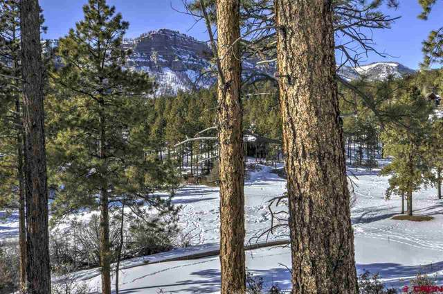196 Old Stage Coach Pass, Durango, CO 81301 (MLS #780072) :: Durango Mountain Realty
