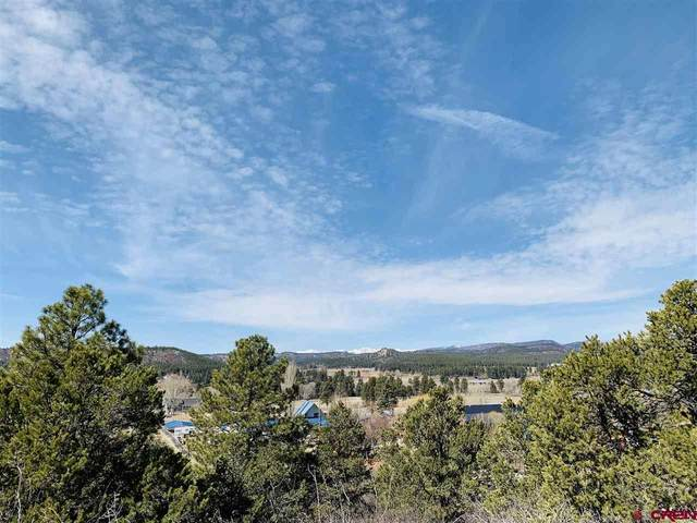 TBD Primrose Lane, Bayfield, CO 81122 (MLS #780078) :: The Dawn Howe Group | Keller Williams Colorado West Realty