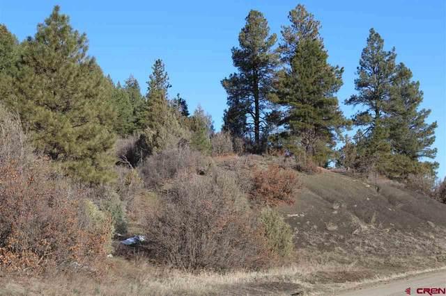 1081 Harvard Avenue, Pagosa Springs, CO 81147 (MLS #780183) :: The Howe Group   Keller Williams Colorado West Realty