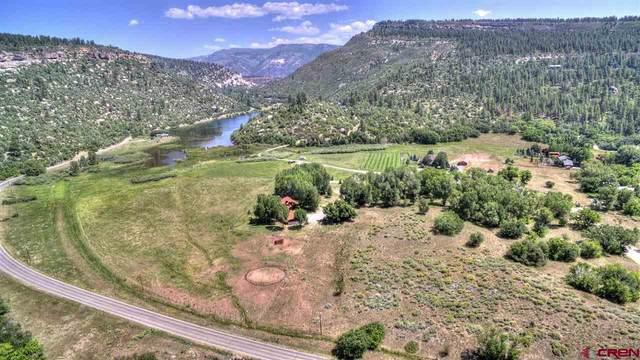 31 Turtle Lake Meadows Drive, Durango, CO 81301 (MLS #780243) :: Durango Mountain Realty