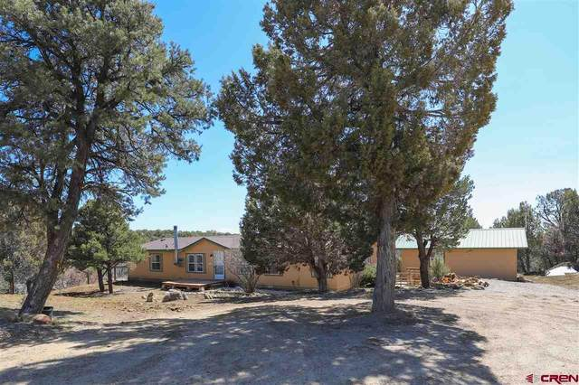 462 Farraday, Durango, CO 81303 (MLS #780249) :: The Dawn Howe Group | Keller Williams Colorado West Realty