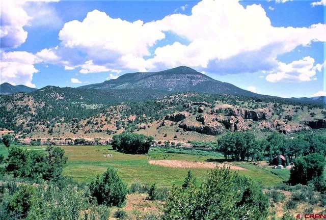 0341 S Eagle's Crest Lane, South Fork, CO 81154 (MLS #780314) :: The Howe Group | Keller Williams Colorado West Realty