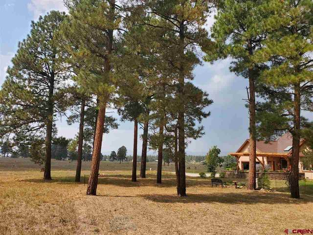 69 Capstone Circle, Pagosa Springs, CO 81147 (MLS #780367) :: The Howe Group | Keller Williams Colorado West Realty