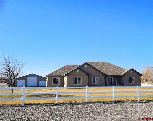 60836 Logan Lane, Montrose, CO 81403 (MLS #780390) :: The Dawn Howe Group | Keller Williams Colorado West Realty
